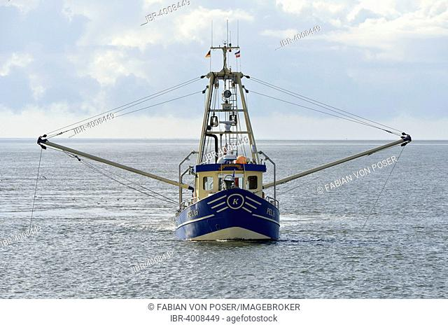 Fishing boat off Pellworm island, North Frisia, Schleswig-Holstein, Germany