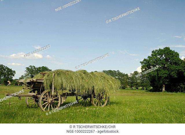 Hey cart in Bavaria