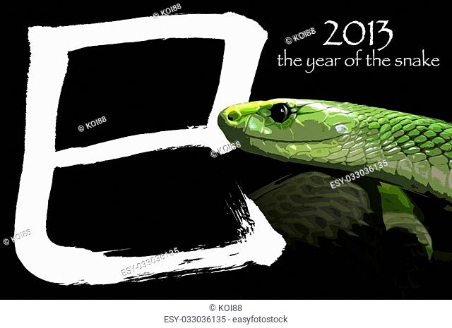 According to the Chinese zodiac, 2013 is the year of the Snake. The chinese letter means SNAKE