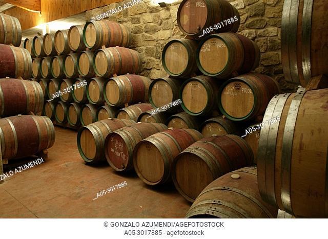 Miguel Merino winery. Briones village. La Rioja. Spain