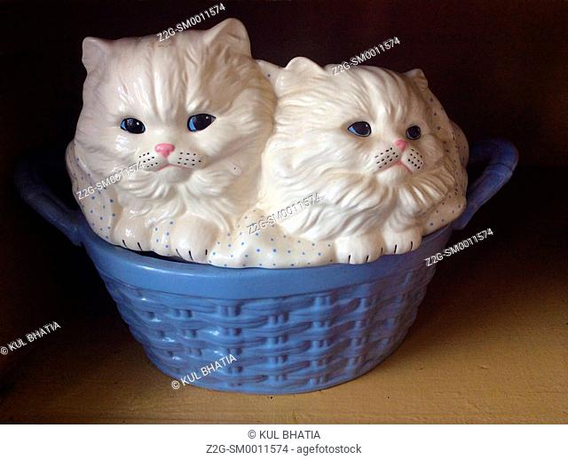 Two white kittens in a blue basket, Ontario, Canada