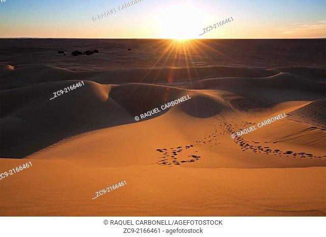 Sahara desert sand dunes, Erg Lihoudi, M'Hamid, Draa Valley, Morocco