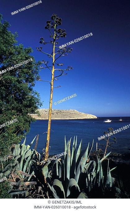 Pondanos beach, general view  Halki, Dodecanese, Greece
