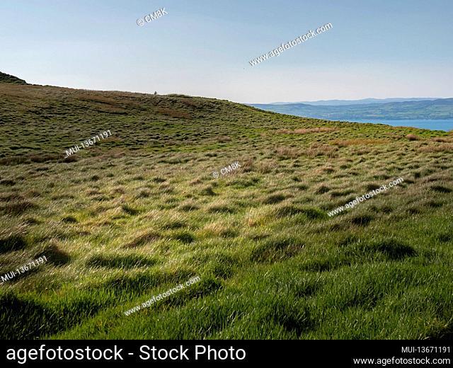 Amazing Binevenagh cliffs in Northern Ireland - travel photography