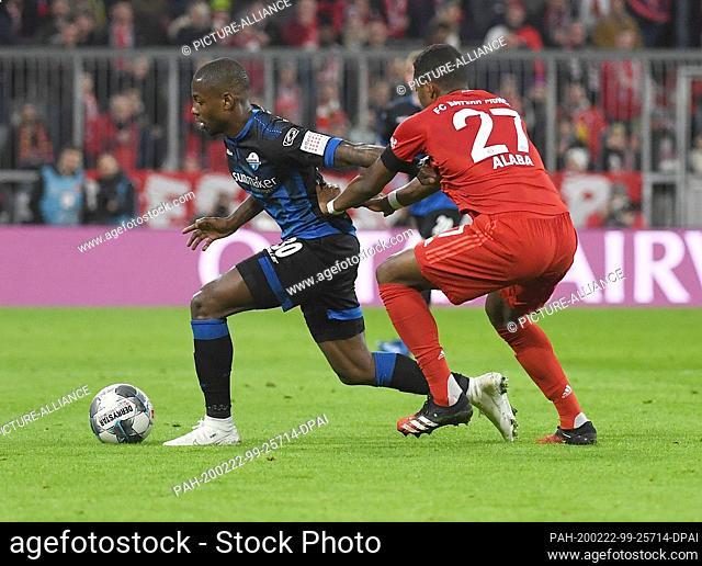 21 February 2020, Bavaria, Munich: Football: Bundesliga, Bayern Munich - SC Paderborn 07, 23rd matchday. Bavaria's David Alaba (r) fights for the ball with...