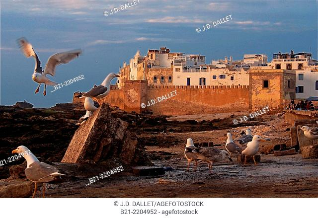 Walls of the former Portuguese town, Essaouira, Morocco