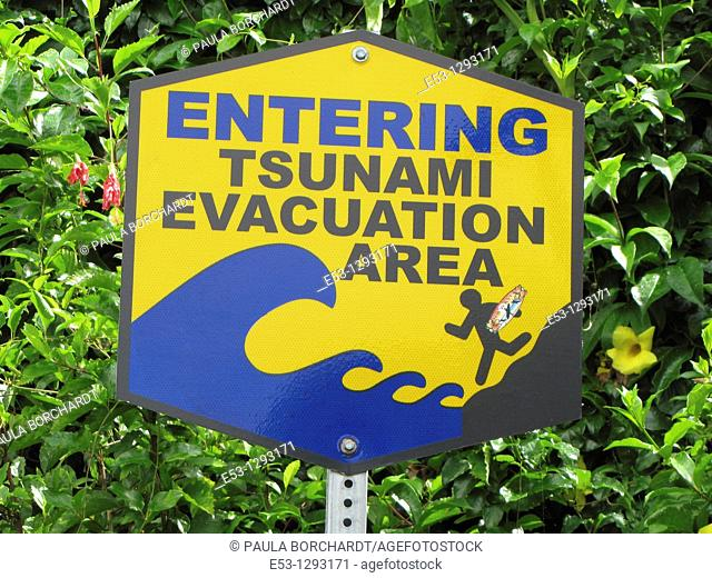 Tsunami evacuation area sign, Hilo, Big Island, Hawaii, USA