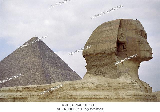 The Sfinx infront of the Cheops pyramid at Giza in Cairo
