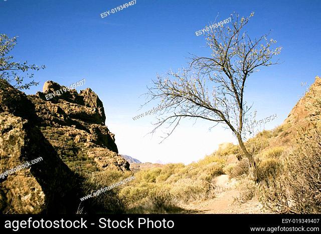 Landschaft Gran Canaria