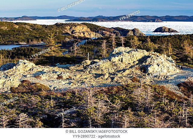 Rugged Coastal Landscape - Crow Head, Twillingate, Newfoundland, Canada