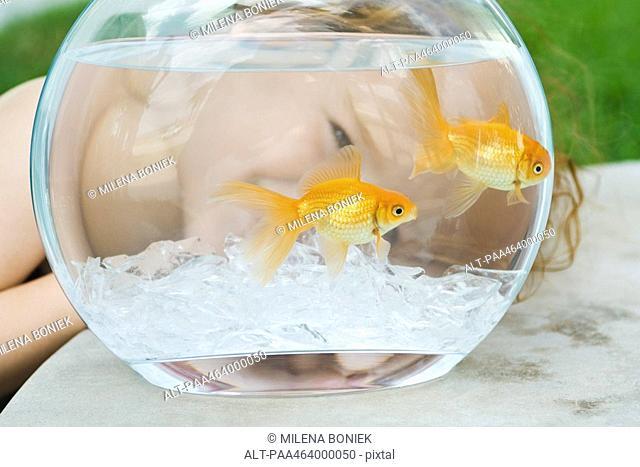 Little girl peeking through goldfish bowl, close-up