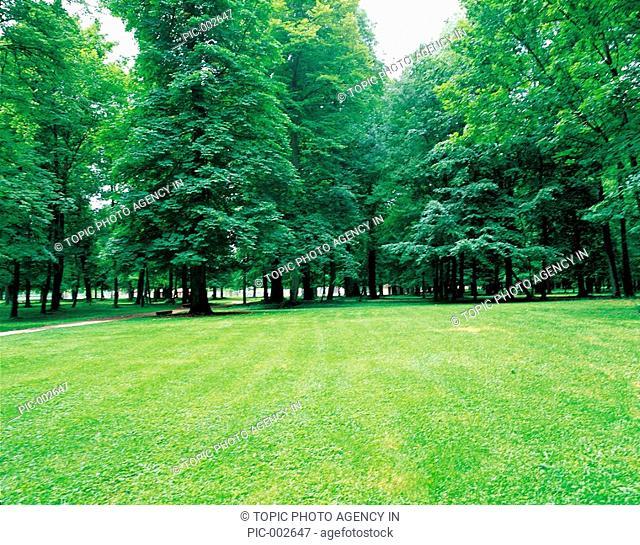 Park In Summer,Dijon,France