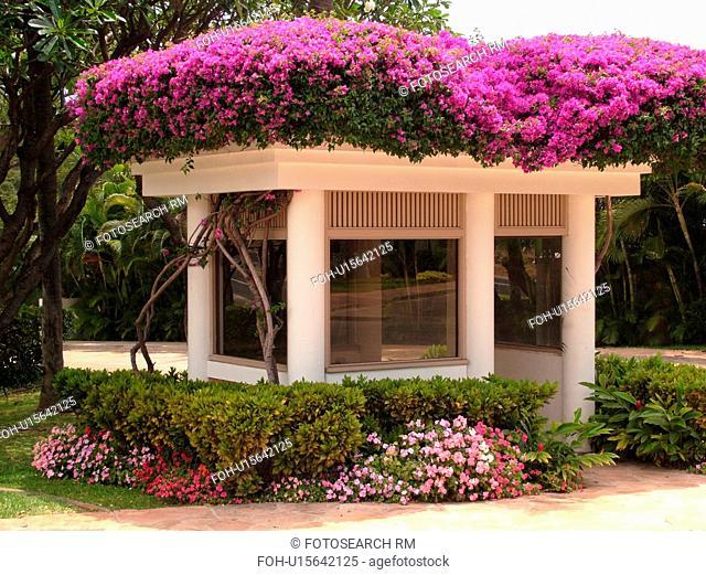 Wailea, Maui, HI, Hawaii, Wailea Point, Renaissance Wailea Beach Resort