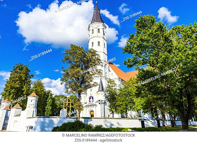 Cathedral of Saints Peter and Paul, Siauliai (Šiauliai), Siauliai County , Lithuania, Baltic states, Europe