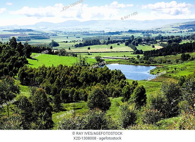Farmlands in the Lidgetton region of the Midlands, KwaZulu Natal, South Africa