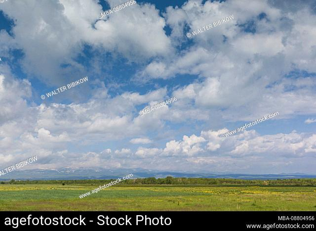 Armenia, Lake Sevan, Martuni, field, springtime