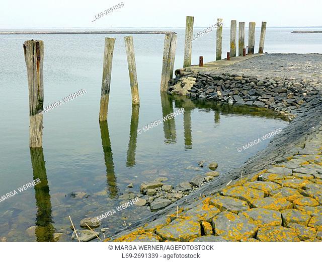 Landscape on Hallig Langeneß with coastal protection and walk, Wadden Sea, North Sea, Schleswig-Holstein, Germany, Europe