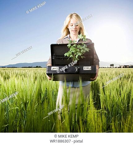 businesswoman holding a briefcase with a tree in it