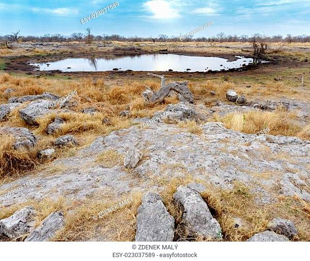 Empty waterhole in namibia game reserve