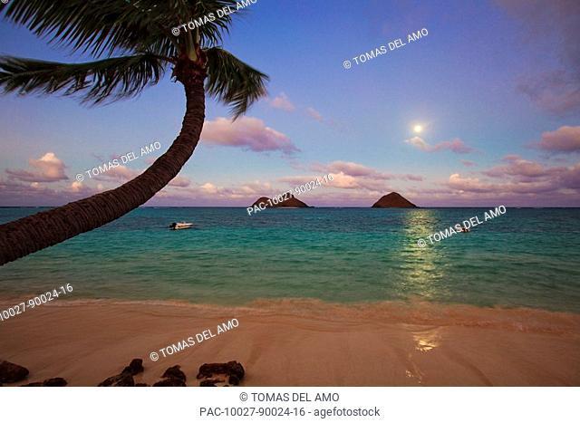 Hawaii, Oahu, Lanikai beach at moonrise