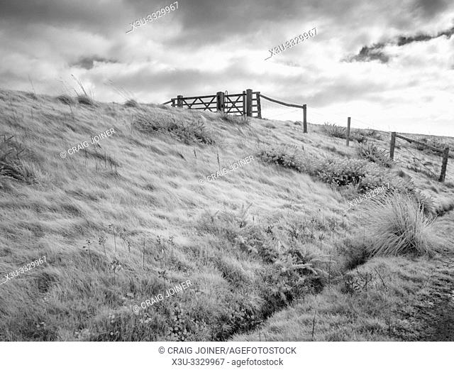 An infrared image of the Levee at Medmerry Nature Reserve near East Wittering in West Sussex, England