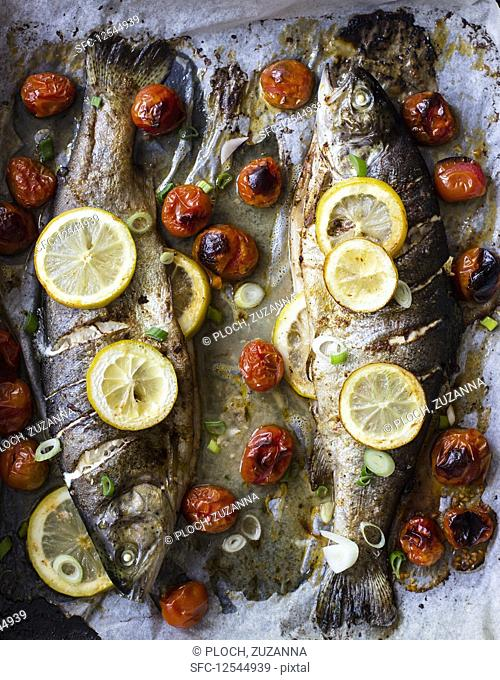Trout baked with cherry tomatoes and lemon, spring onion