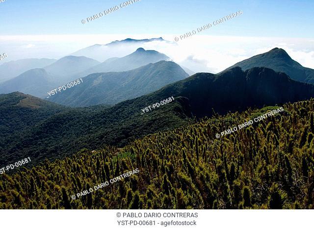 Landscape, nature, Paraná, Brazil