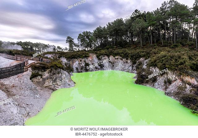 Green Devil's Bath thermal lake in Wai-O-Tapu thermal area, Waiotapu, Rotorua, Waikato Region, New Zealand