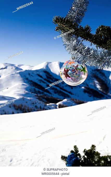 Christmas tree mountain