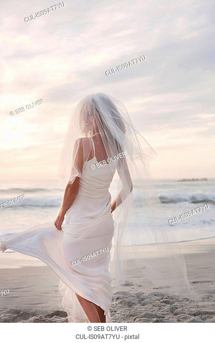 Young woman wearing wedding dress and veil, on beach, rear view
