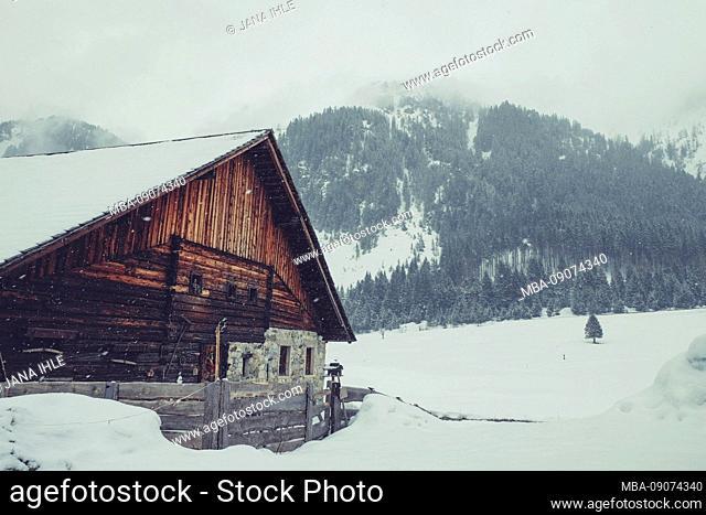 Alpine hut and winter landscape in snowfall