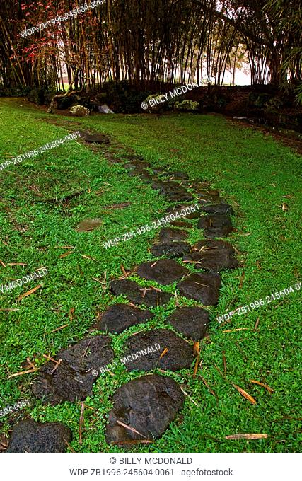 Stone Pathway Leading Through Bamboo Forest, Koele Lodge, Lanai, Hawaii, USA