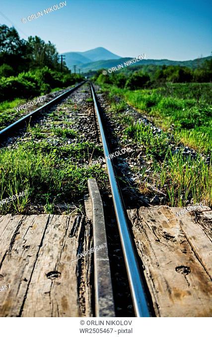 railway in green landscape nature