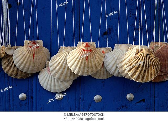 Way of Saint James symbol shell