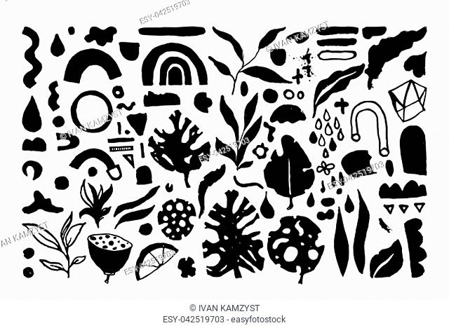 Set of creative universal floral elements. Hand Drawn textures backdrop. Posters, wedding card, eco design, organic products