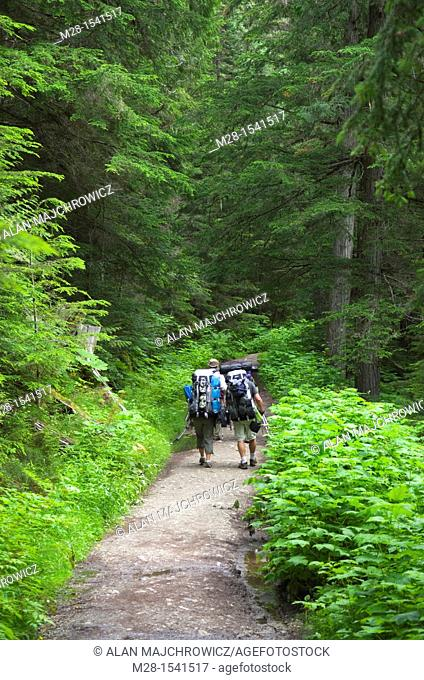 Backpackers on the Berg Lake Trail Mount Robson Provincial Park British Columbia Canada