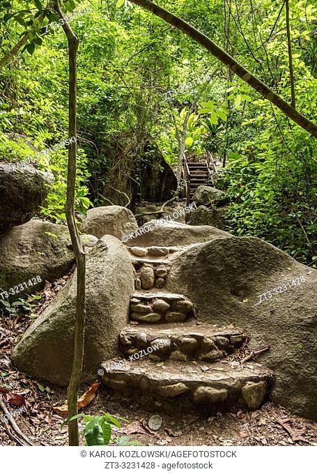 Trail in Tayrona National Natural Park, Magdalena Department, Caribbean, Colombia