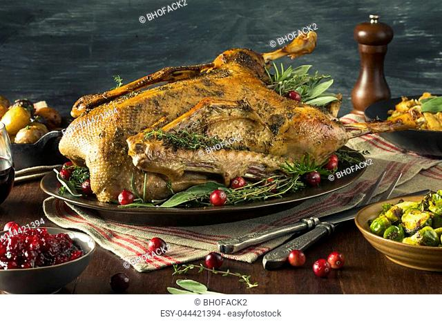 Homemade Festive Roasted Christmas Goose with All the Sides