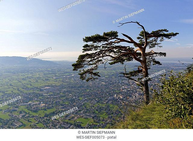Austria, Dornbirn, View from Karren mountain over Rhine valley