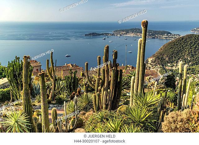 France, Provence, Côte d'Azur, Eze, Jardin Exotique, Cacti, Eze Village, Cap Ferrat