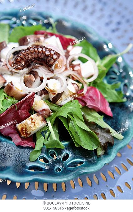 Warm octopus and shallot salad