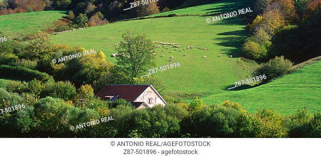 Irati river valley, Orbaitzeta, Pyrenees Mountains. Navarra, Spain