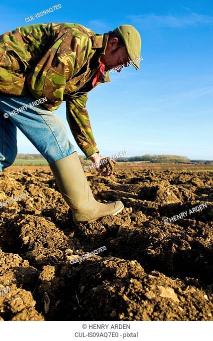 Farmers inspecting soil in ploughed field