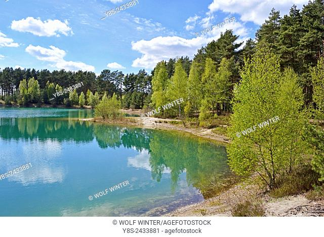 Small Lake in Spring at Wilsche, Gifhorn, Lower Saxony, Germany