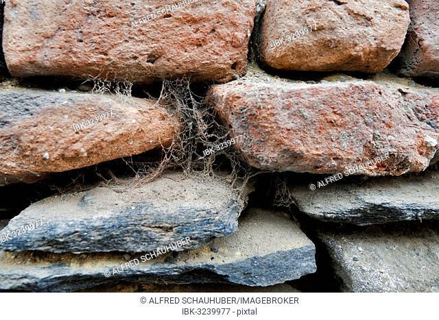Cobwebs on a stone wall