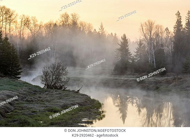 Early spring morning mists on Junction Creek, Greater Sudbury, Ontario, Canada