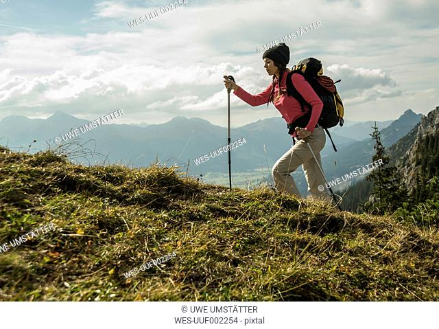 Austria, Tyrol, Tannheimer Tal, young woman hiking on alpine meadow
