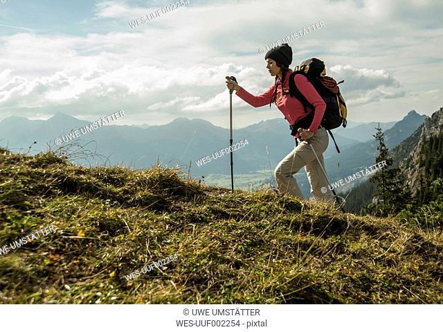 Austria, Tyrol, Tannheimer Tal, young woman hiking on alpine meadow
