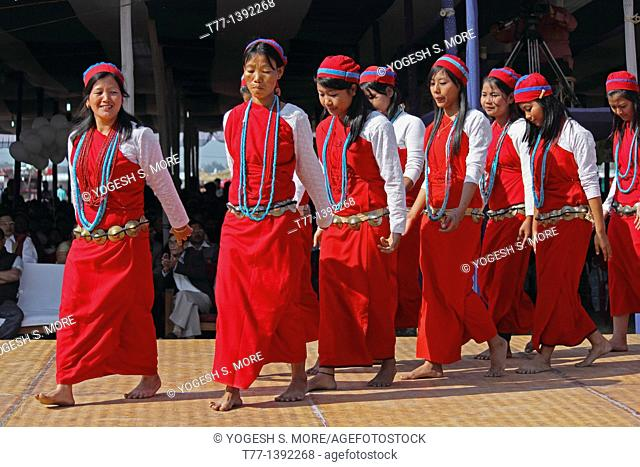 Tagin Women, Tribes Performing Dance at Namdapha Eco Cultural Festival, Miao, Arunachal Pradesh, India