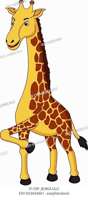 Cute Giraffe walking around